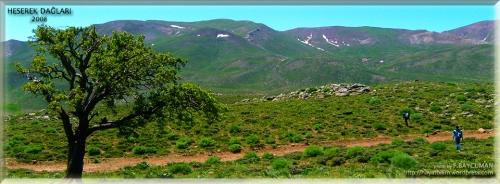 Heserek Dağları 2008 Mayıs